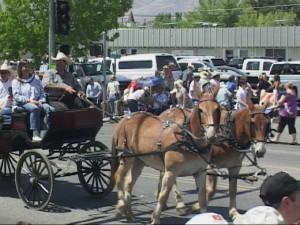 mules.jpg