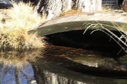 40_acres_water.jpg