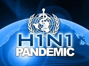 h1n1_flu