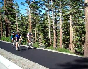 bike_path-1