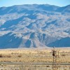 DWP's solar site sits to the east of Manzanar