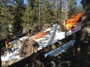 DEPO Pile Burn