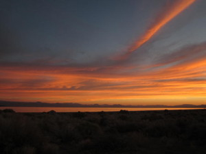 Striking sunrise at Mono Lake.  Photo by Barbara Richter