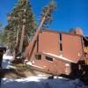 tree-damage-2.jpg