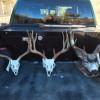 deer-poacher