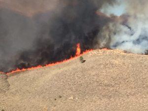 Fire on ridge near Alpers Ranch Photo courtesy Tim Alpers