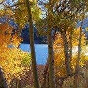 Photo courtesy of Mono County.