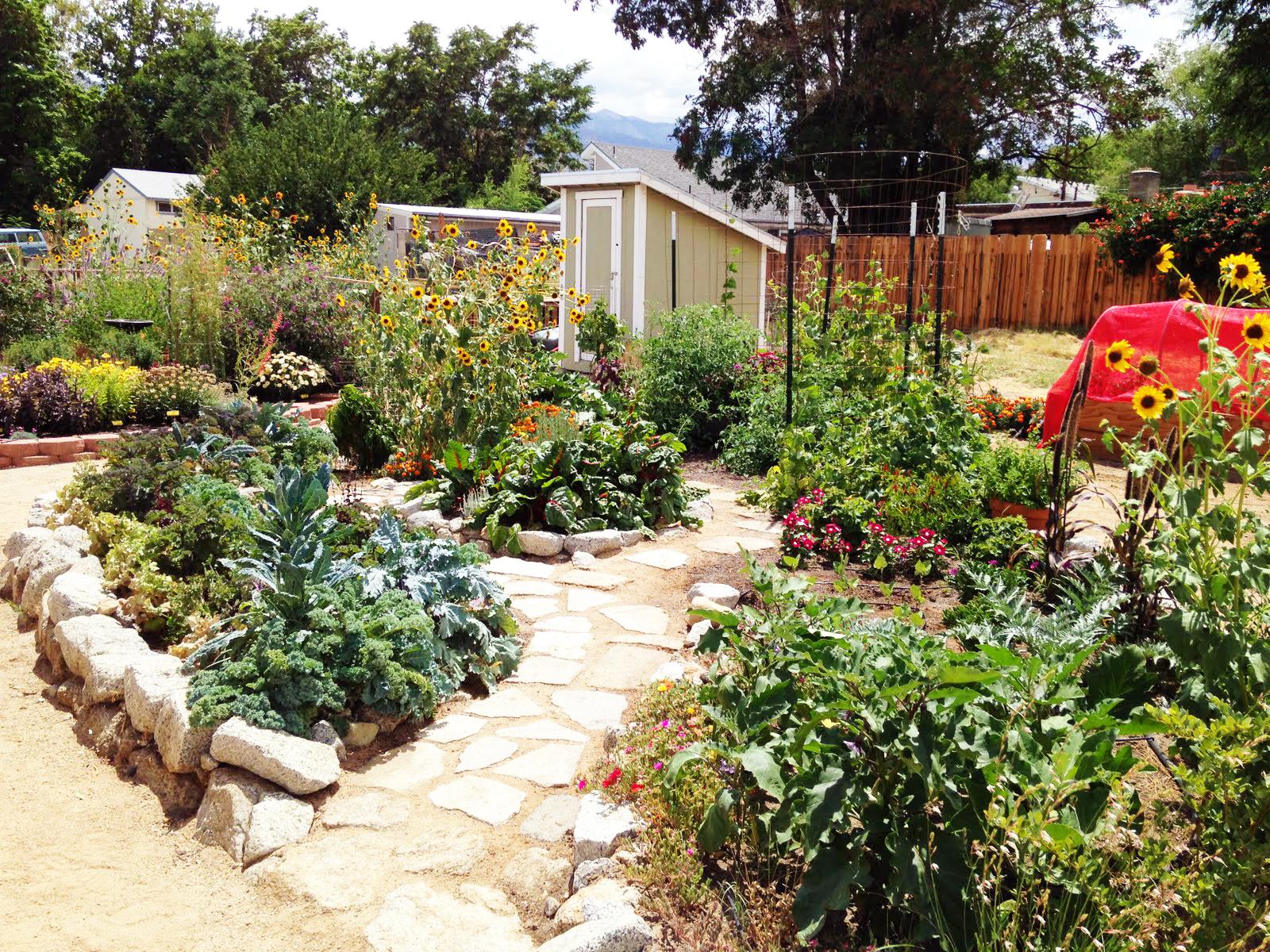 eslt s pollinator garden tour set for saturday sierra wave