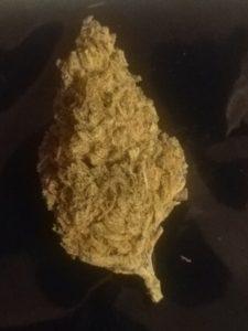 Cannabis Blueberry