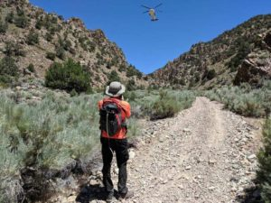 Update: Missing woman, dog found alive - Sierra Wave: Eastern Sierra